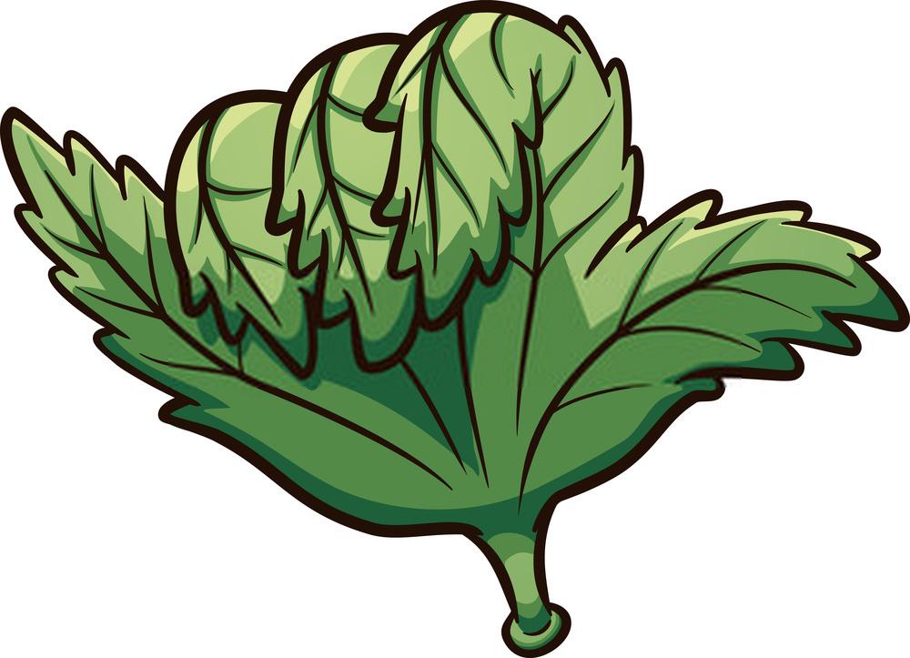 How to Improve The Terpene Levels in Your Growing Marijuana Plants?