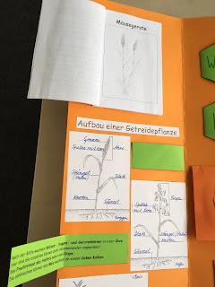 Kunstunterricht in der Grundschule Kunstbeispiele Klasse