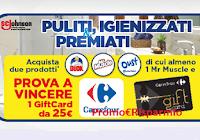 """Concorso """"Da Carrefour igienizzati e premiati con SC Johnson"""" : vinci 100 Gift Card da 25 euro"""