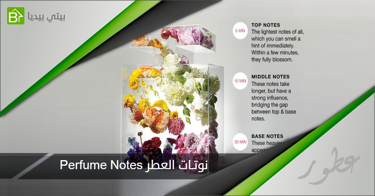 النوتات العطرية fragrance notes