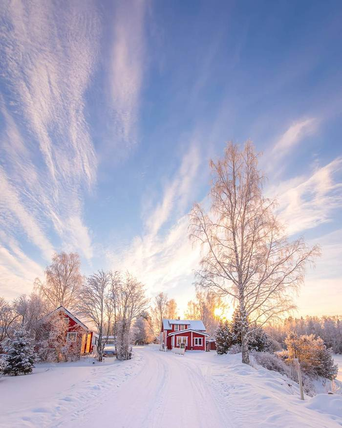 Winter nature of Finland through the lens of Jukka Risikko