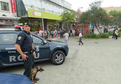 Guarda Civil de Ribeirão Pires faz treinamento para utilizar animais em operações policiais