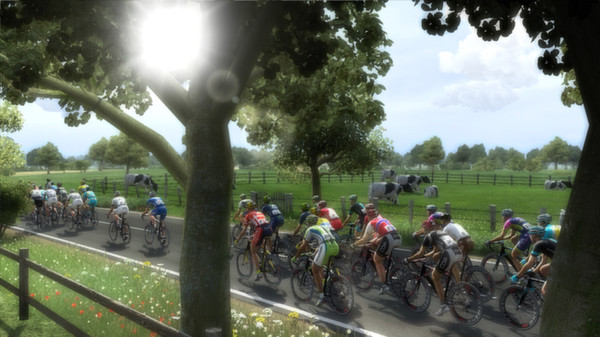 Pro Cycling Manager 2014 Full Version