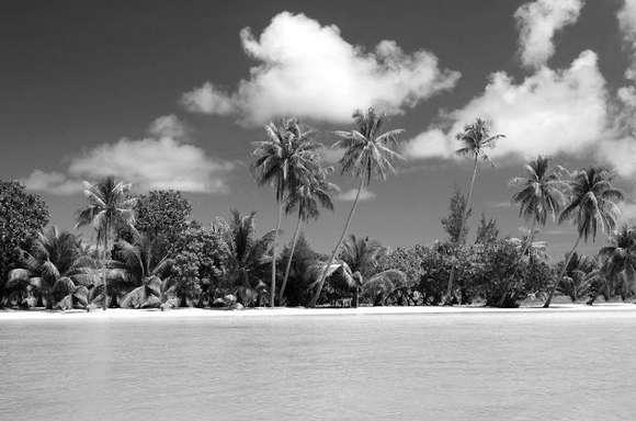 24 Gambar Pemandangan Pantai Indah Cantik Berikut Tema Hitam Putih