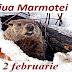 2 februarie: Ziua Marmotei