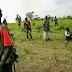 Ituri : L'armée libère 150 civils des mains des ADF à Irumu