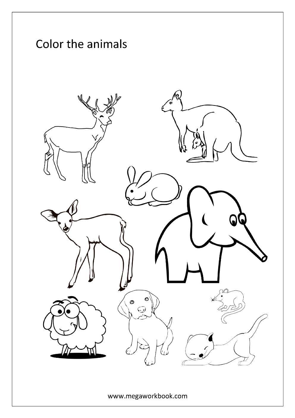 Animal Coloring Page for kids 2019 - Tipss und Vorlagen