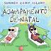 Summer Camp Island: Acampamento de Natal