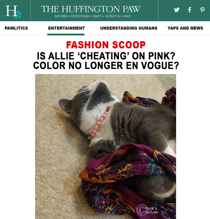 Huffington Paw scoops news that ALlie has abandoned her signature PINK