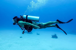 Tips Latihan Diving untuk Pemula