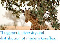 http://sciencythoughts.blogspot.co.uk/2015/02/the-genetic-diversity-and-distribution.html