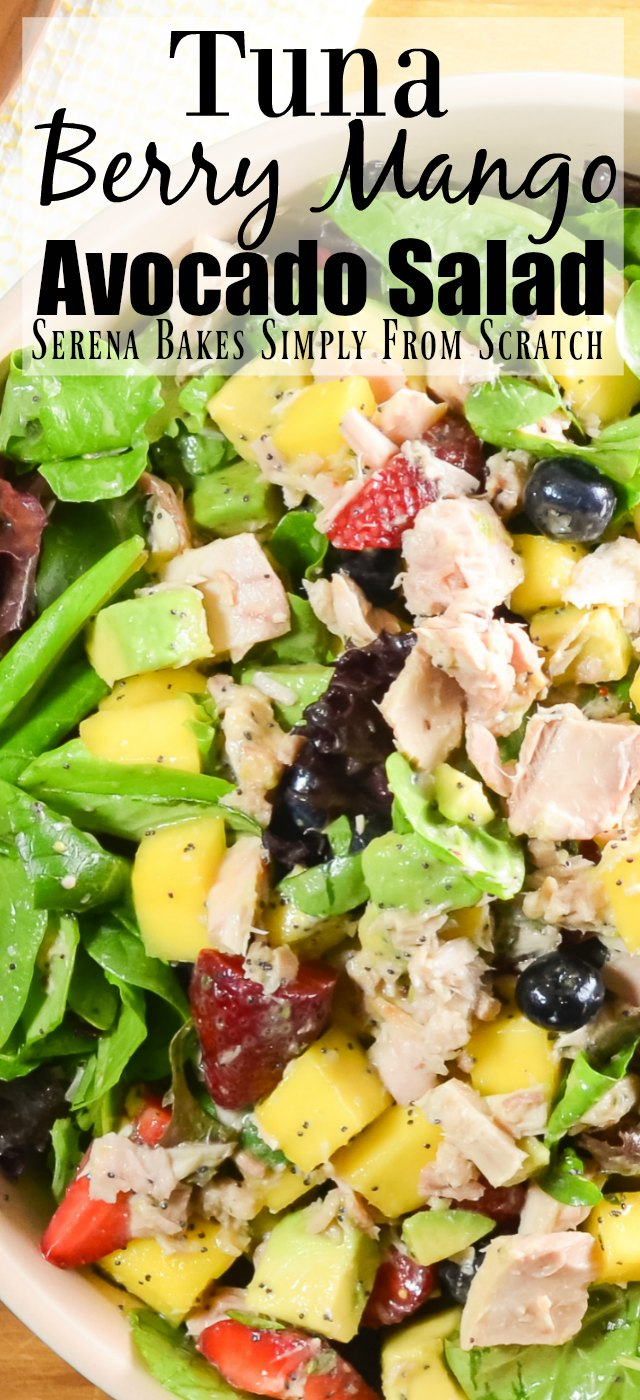 Tuna Berry Mango Avocado Salad- easy, healthy, and delicious!