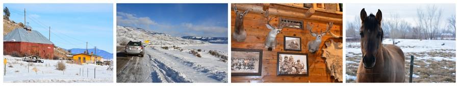 Colorado en hiver, route enneigée et cheval