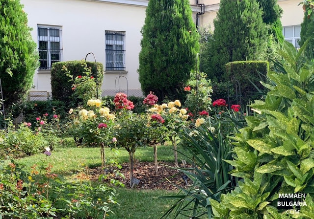 rosaleda Jardín Botánico Sofía Bulgaria