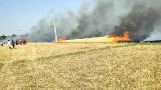 गेहूं के खेत में लगी भीषण आग।80 बीघा में लगे गेहूं का फसल जल कर राख।