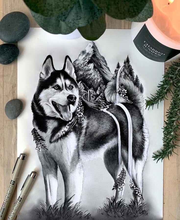 11-Husky-at-one-with-nature-Alyse-Dietel-www-designstack-co