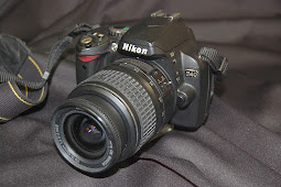 Nikon D40 Software Downloads and Firmware