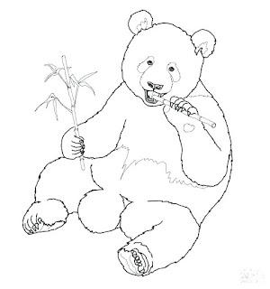 Panda Coloring Sheets Images