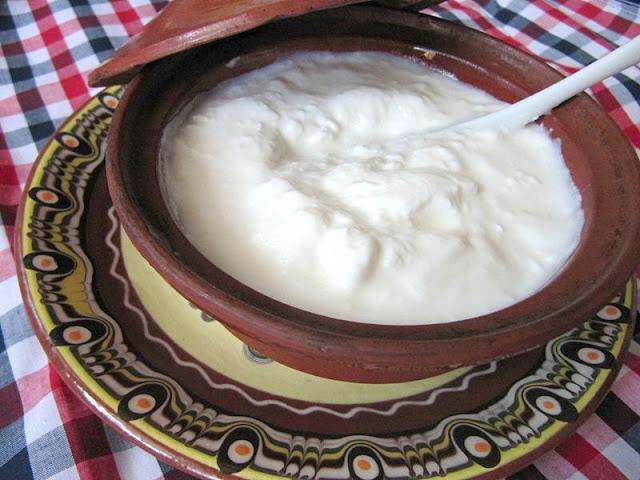 yogur bulgaro bol
