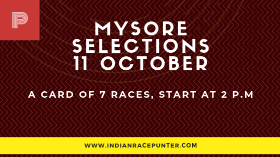 India Race Tips by indianracepunter, free indian horse racing tips, trackeagle, racingpulse