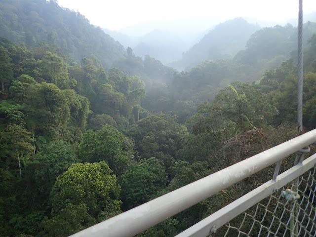 situ gunung suspension bridge, jembatan gantung terpanjang se-asia tenggara