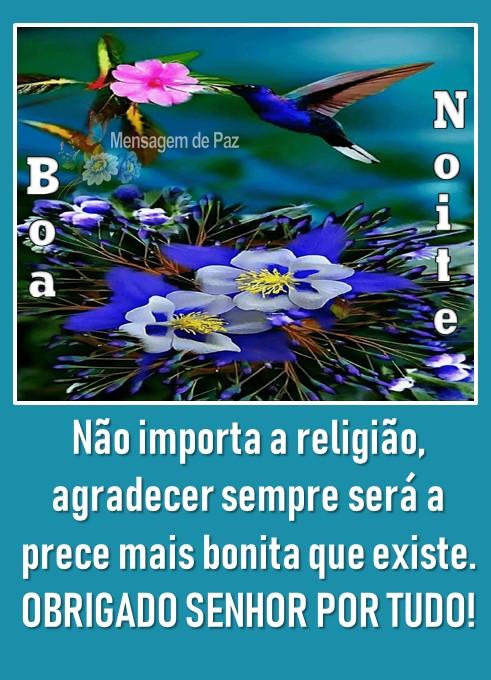 Não importa a religião,  agradecer sempre será a   prece mais bonita que existe.  OBRIGADO SENHOR POR TUDO!  Boa Noite!