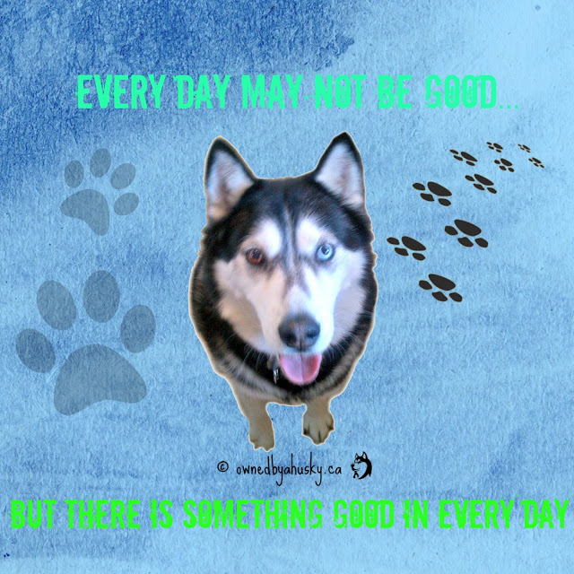 Every Day May Not Be Good... quote