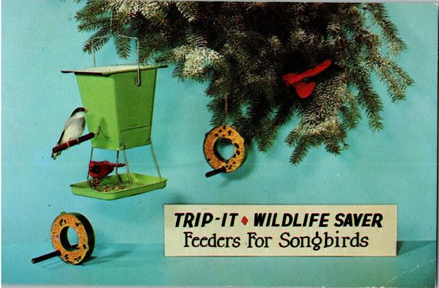 Photo of an old birdfeeder postcard