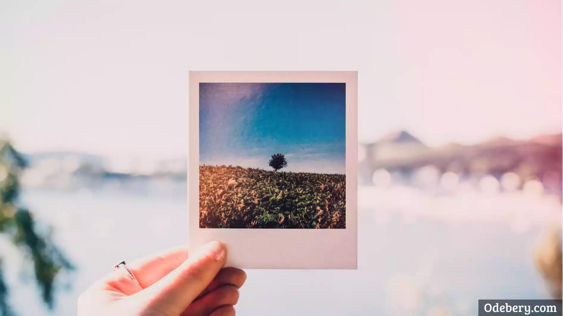 Cara mengganti background foto di canva