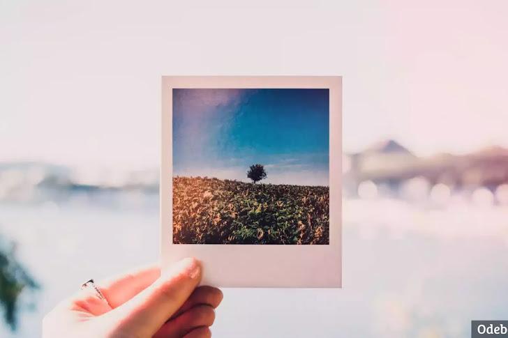Cara Mengganti Warna Background Foto di Canva