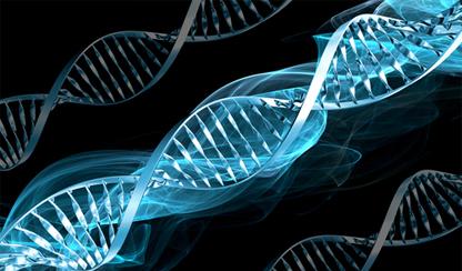 Penyebab Badan Kurus Karena Genetika