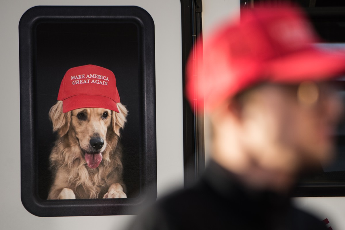 Donald Trump's Canine Obsession | www.petnook.com