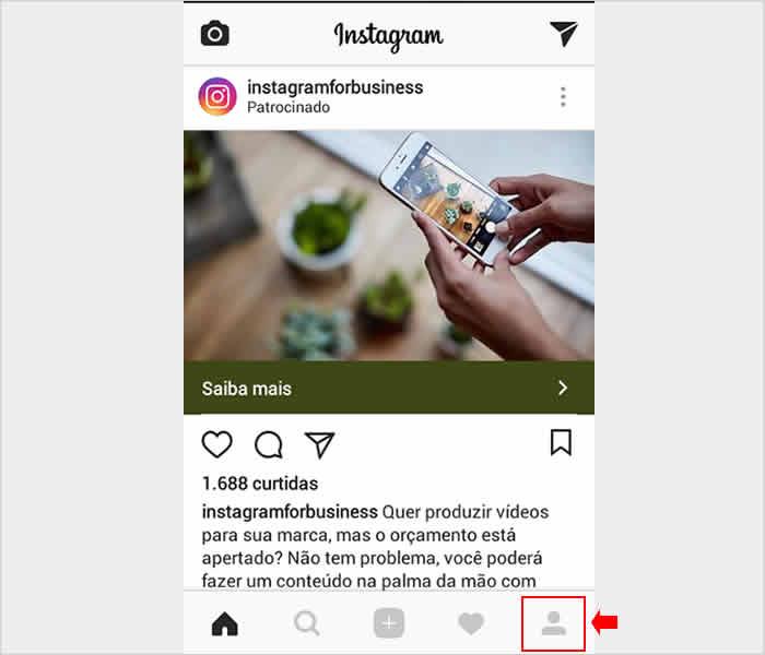 Acessando perfil do Instagram