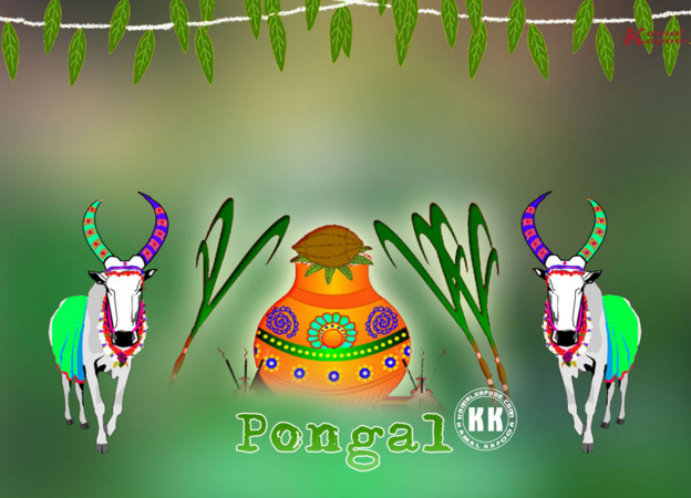 animated happy pongal imagee