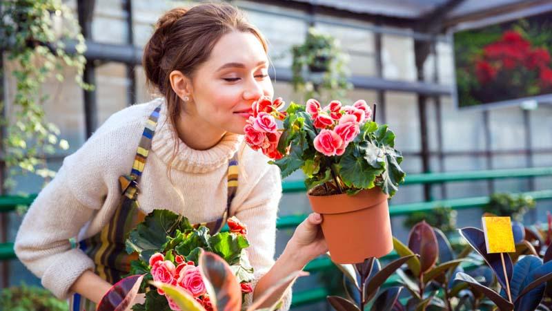 Time Saving Garden Tips