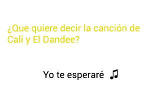 Significado de la canción Yo Te Esperaré Cali El Dandee.