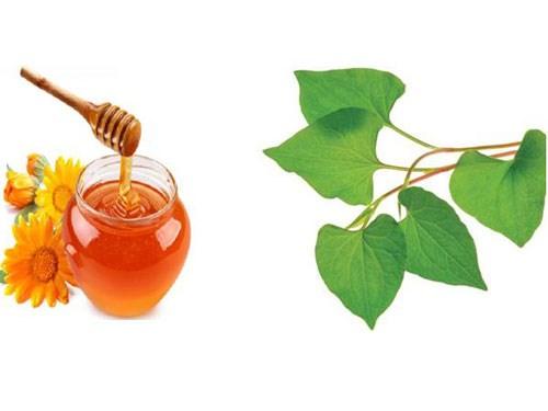 Rau diếp cá trị mụn kết hợp với mật ong: