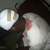 Masquerades Attack Muslims Inside Mosque in Ikun Ekiti
