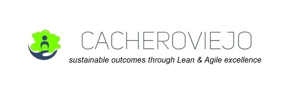 sustainable outcomes through Lean & Agile excellence