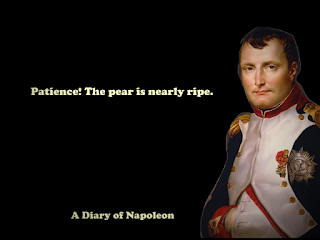 Best Napoleon Sayings from his diary