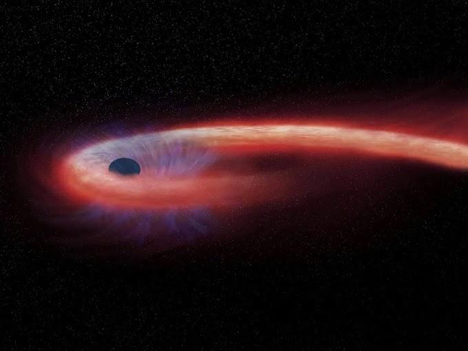 Captan una estrella 'espaguetizada' por un agujero negro