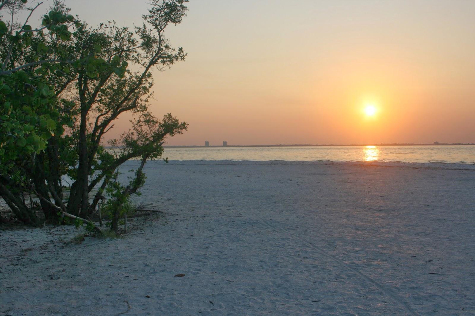 Sanibel Island Hotels: Sunshine And Lollipops: Sketchbook Tuesday-Sanibel Island, FL