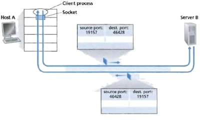 source and destination port in TCP and UDP segment