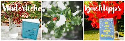 winterliche-buchtipps-blog-dazwischen-ich-englisch