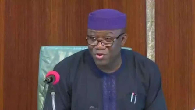 Fayemi dismisses Senate's role, says House of Reps enough for Nigeria