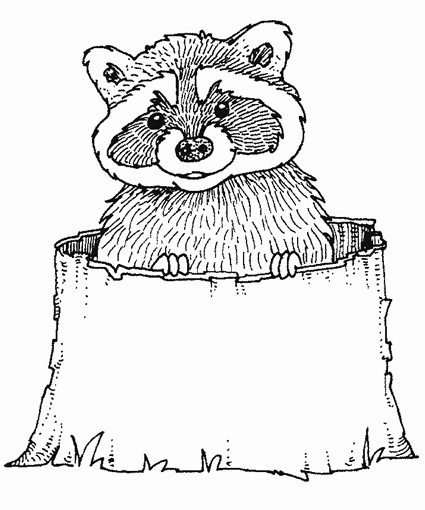 Raccoon Coloring Pages - Colouring for Kids Raccoon Face Coloring Page