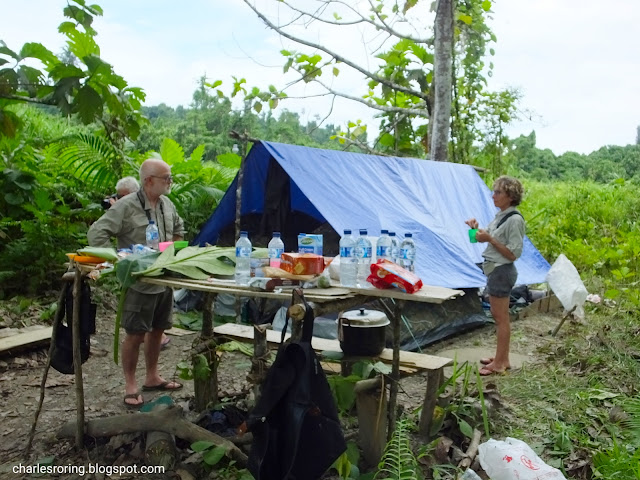 French tourists on a birding and camping tour in Manokwari