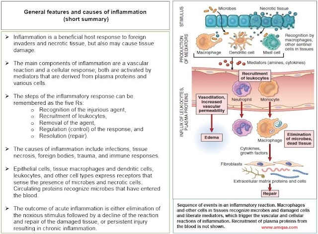 What is systemic inflammatory response syndrome (SIRS)?