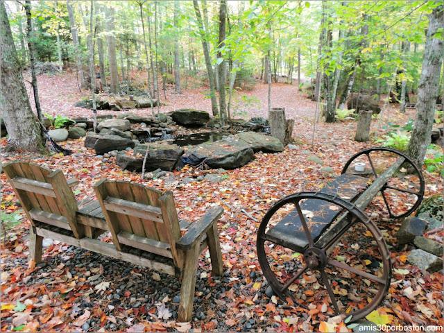 Zona de las Cabañas Turísticas en Maine