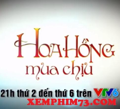Phim Hoa Hồng Mua Chịu Tập 15 Trên VTV6